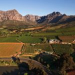 10_things_all_south_afrians_love_about_coming_home_wine